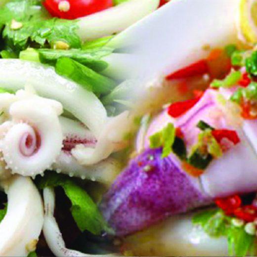 Squid & Cuttlefish