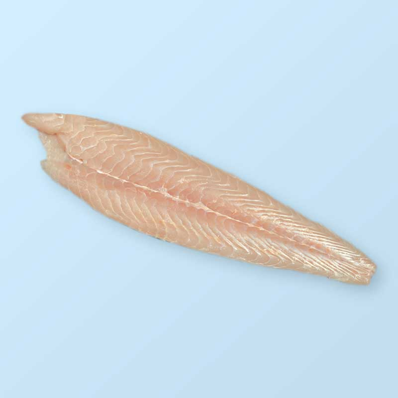 Red Fillet, Striped Catfish