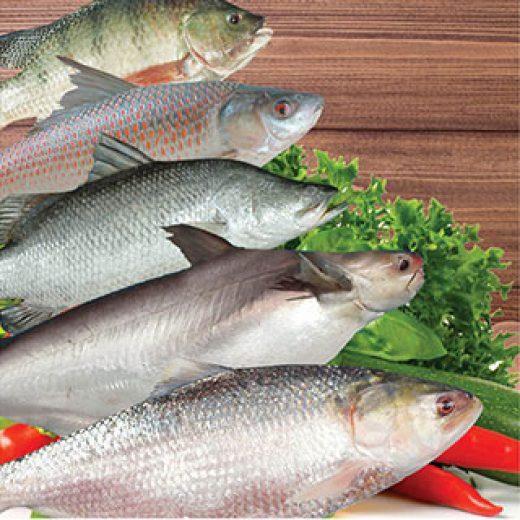 Fresh Water Fish